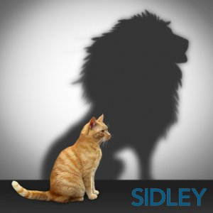 A Guide To Assertiveness Sidley