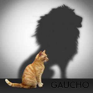 A Guide to Assertiveness Gaucho